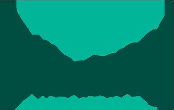 Olliscience